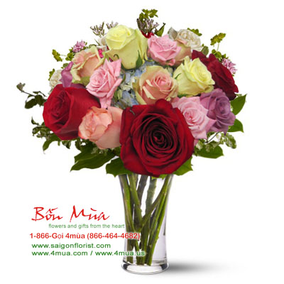 A dozen mixed color Roses (4mua BMS-004MIX)