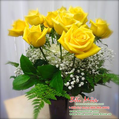 One dozen yellow Roses (4mua BMS-004YEL)