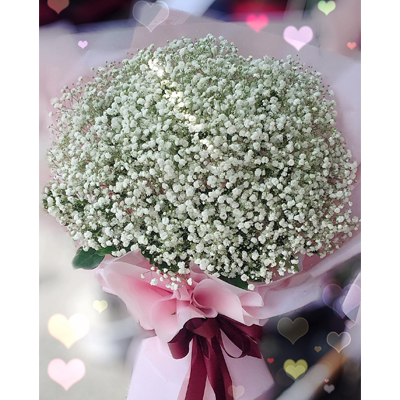 Baby's breath flower bouquet / standard (4mua BOU-BABY01)