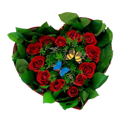 One Dozen Red Roses in Heart Box (4mua HHF-R01HE)