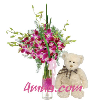 Flowers and Gift: Orchid with a Bear (bonmua VAO-007A)