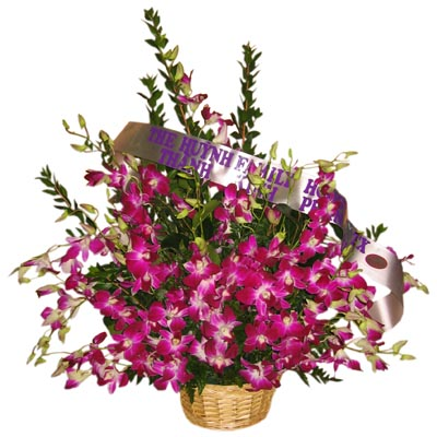 Orchid for Sympathy in basket (4mua® VFU-AR015)
