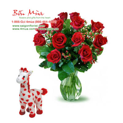 Flowers and Gifts: 12 Roses and TY Smoothie Giraffe (4mua VLO-003A)