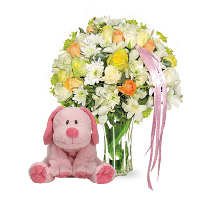 Flowers and Gift New Baby For Girl (bonmua VLO-BB02)